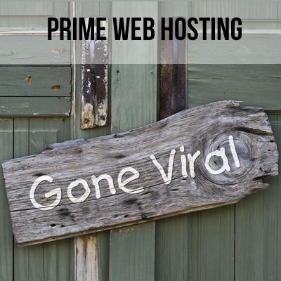 Custom Web Hosting Plan (Amy)