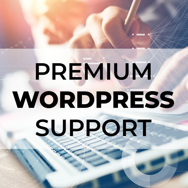 Premium One-Time Support – 3 Sites