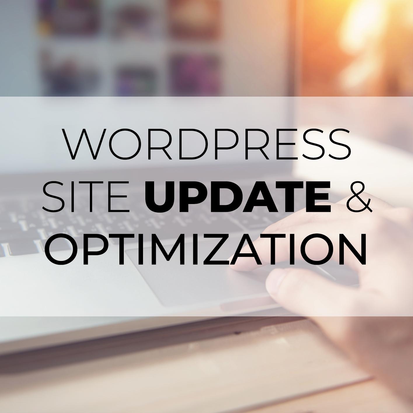 Full Site Update & Optimization – WordPress