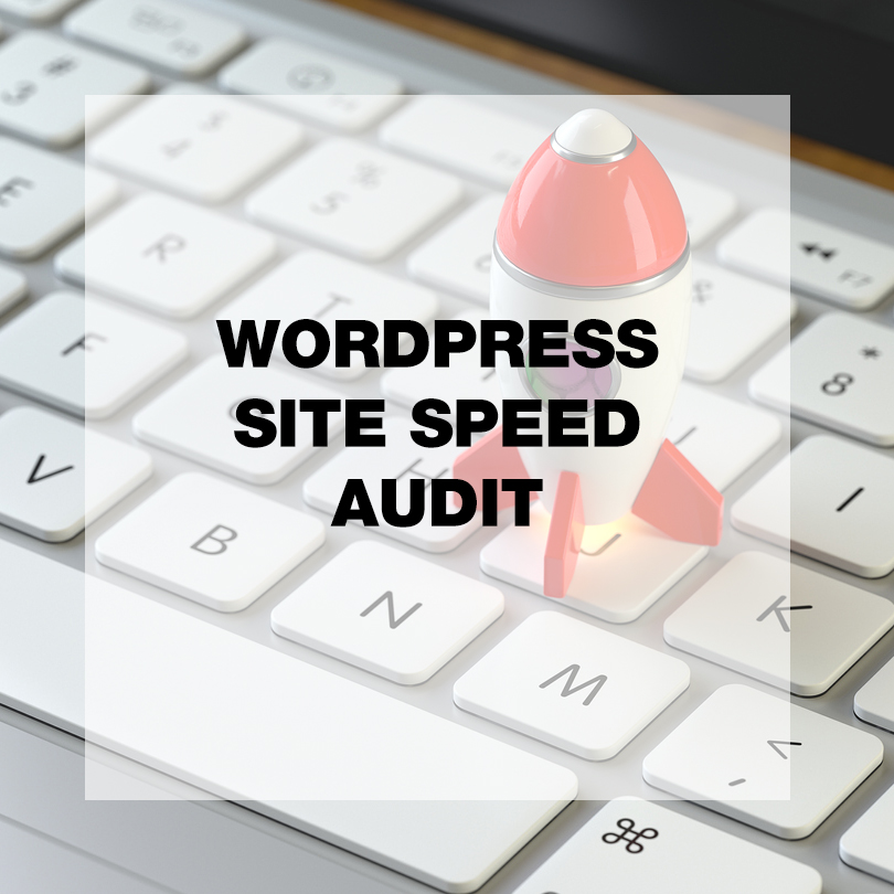 WordPress Site Speed Audit
